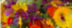 flowers only _edited.png