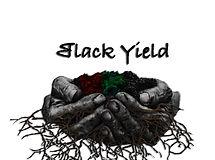 Black Yield.jpg