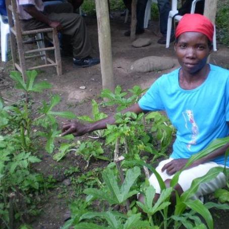 Perseverance, Hope and School Gardens in Haiti