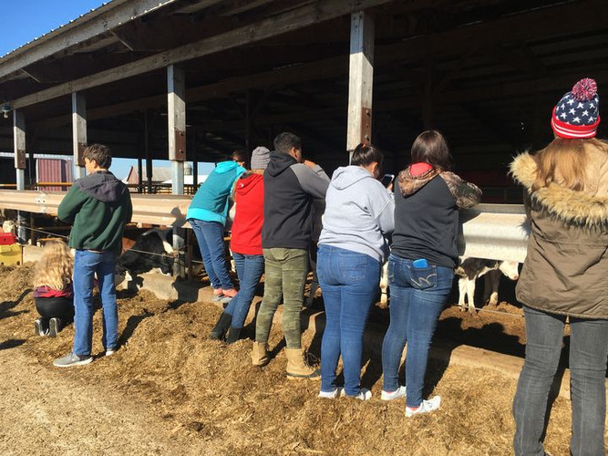 Students visiting Brock Dairy in Michigan's Upper Penninsula. Photo by Monica Jean