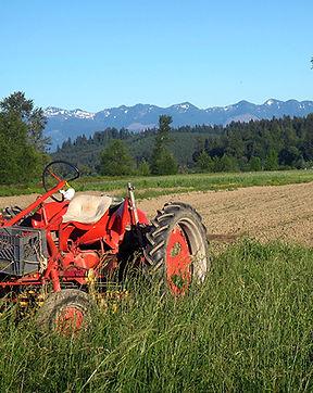 oxbow  tractor.jpg