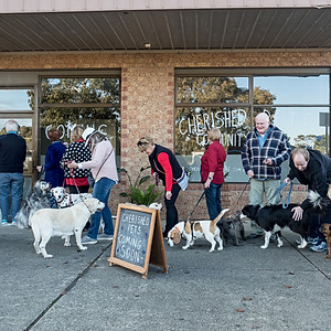 Cherished Pets Clinic Pre-Opening
