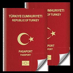 جواز سفر.png