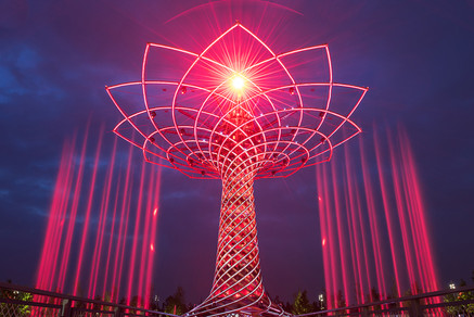 World Expo Tree of Life