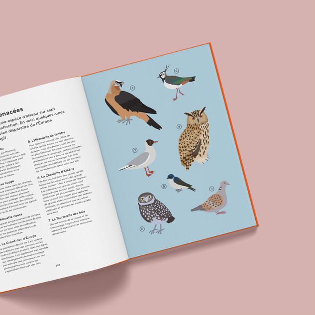 ornithorama - espèces menacées