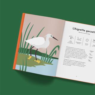 ornithorama - aigrette