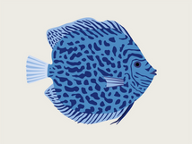 6-poisson-discus.png