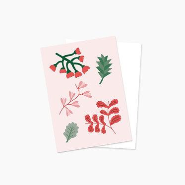 Plantes automnales - rose