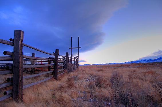 cattle-drive-2-1223863.jpg