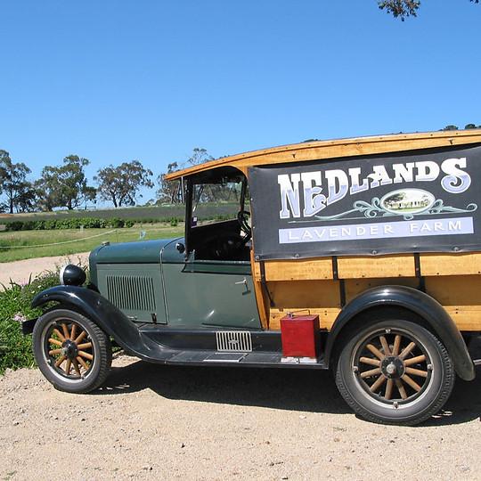 Nedlands