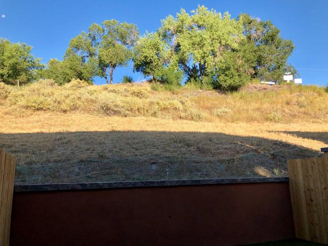 back_hill.JPEG