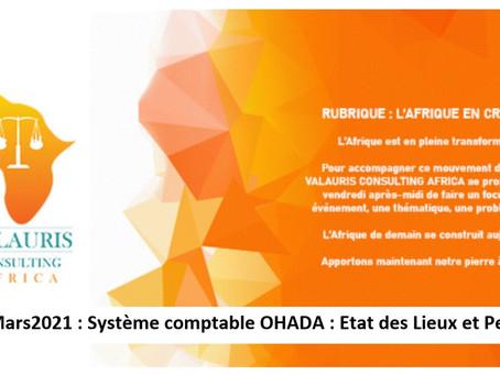 #AfricanZoom7 : Système comptable OHADA : Etat des Lieux et Pertinence