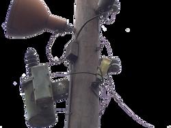Coke Bottle Insulator in Asia