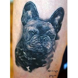 Healed pet portrait black & Grey tattoo