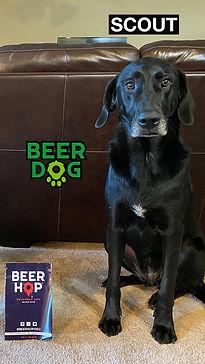 BeerDog_Scout.jpg