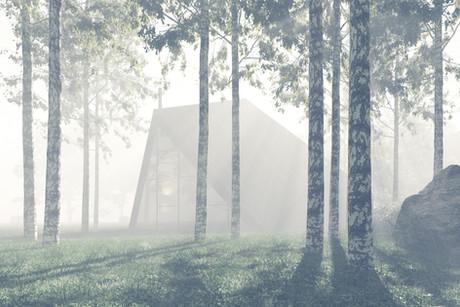 main fog.jpg