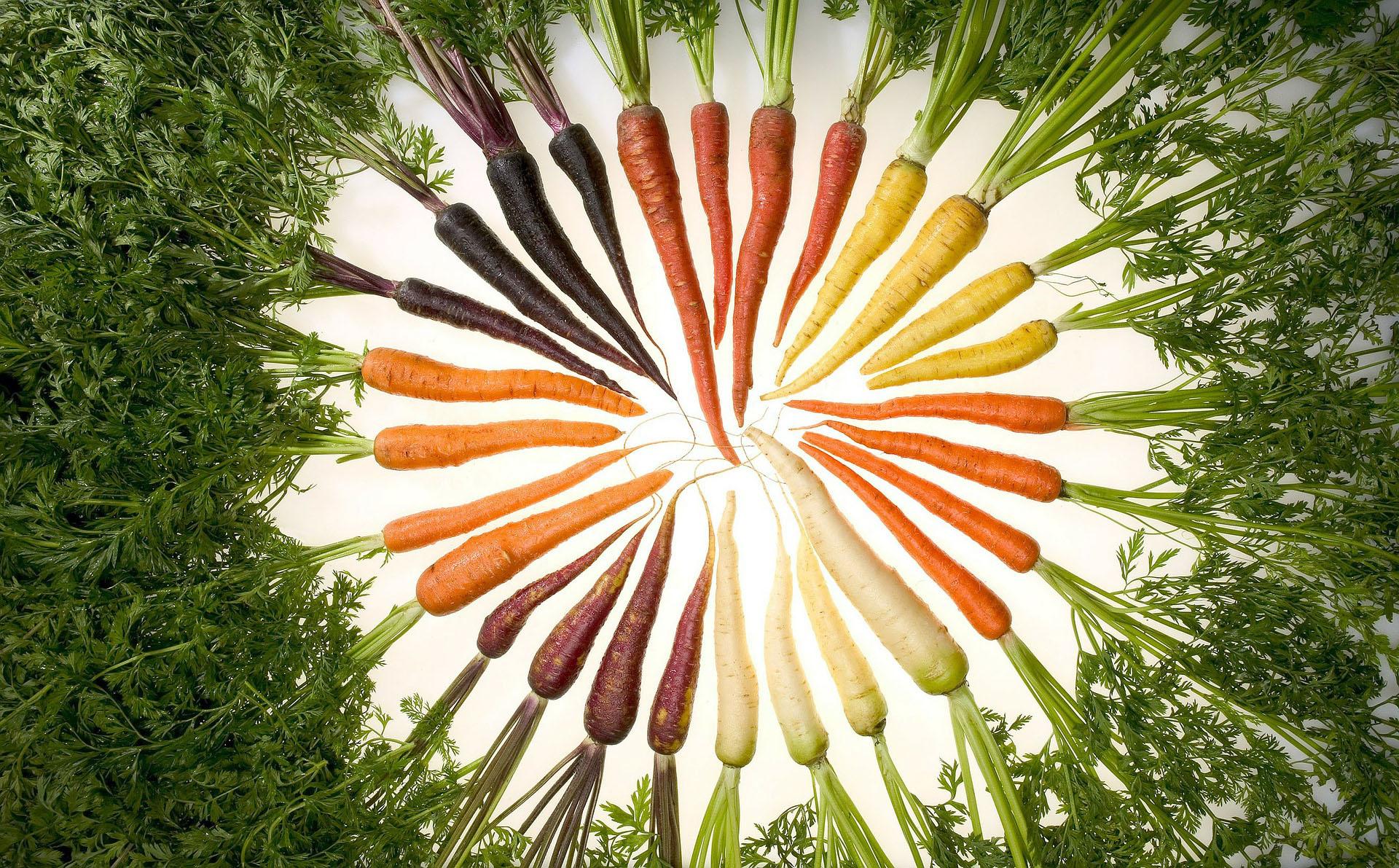 carrots-76653_1920
