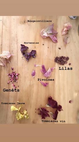tableau botanique
