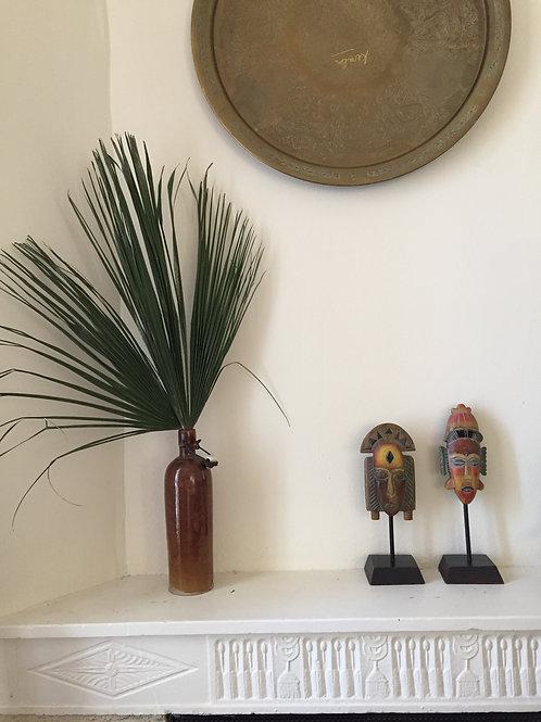 Feuille de palmier | frais |