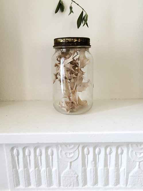 Bocal de fleurs sechées | chardons