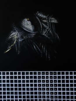 Secret of Crow, 80x120 cm, mixed media on canvas, 2017