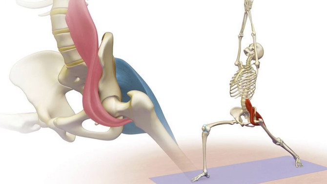 The mighty psoas muscles - What, where & why?