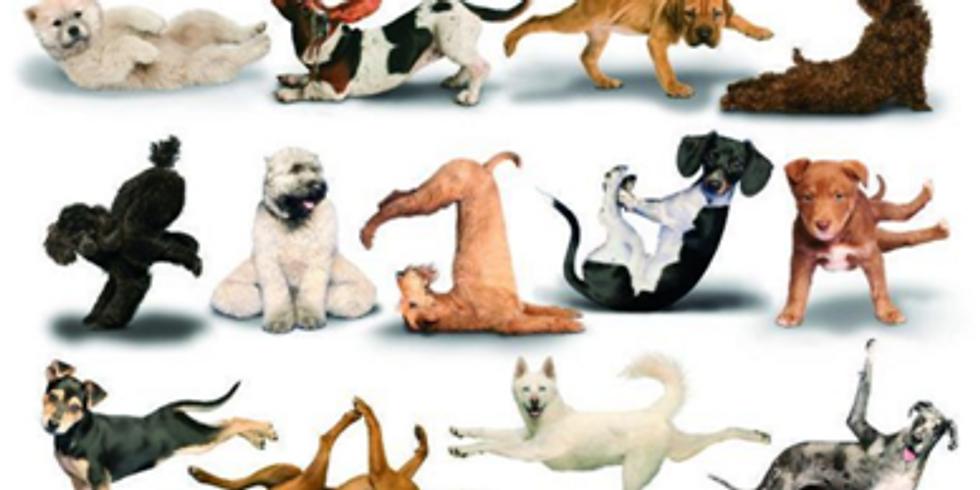 Up dog - Down dog - Chaturanga...