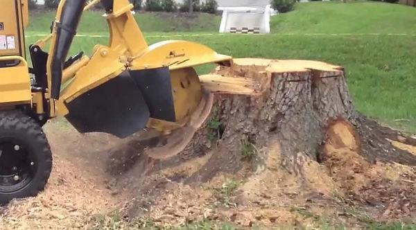 Stump Busters Pennsylvania