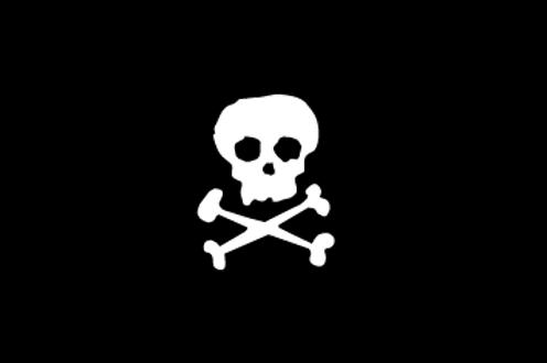 Skullncrossbones Flag