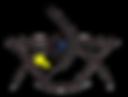 logo 1 experiment.png