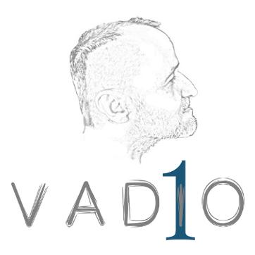 155 Vadio 1 - Logo SITE