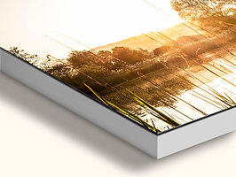 ArtBox Plexi.jpg