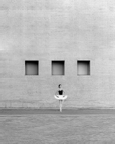 urban swan 2020.jpg