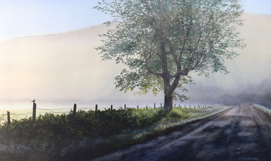 Bodge Hill Road