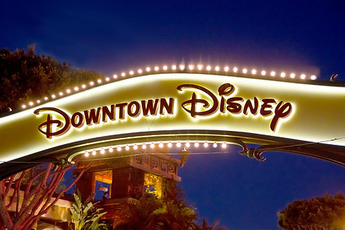 Downtown Disney Wax Melt