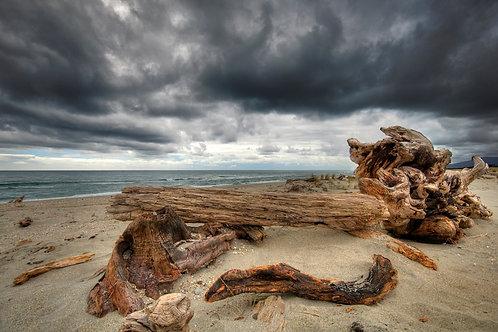 Driftwood Wax Melt