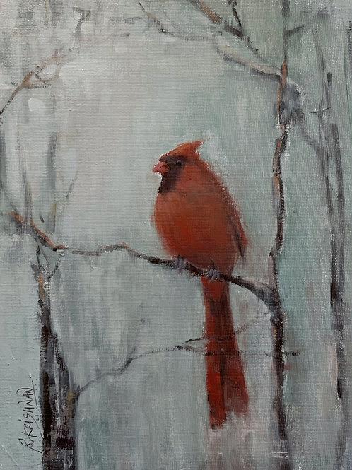 Cardinal | 8x10, Oil on Canvas