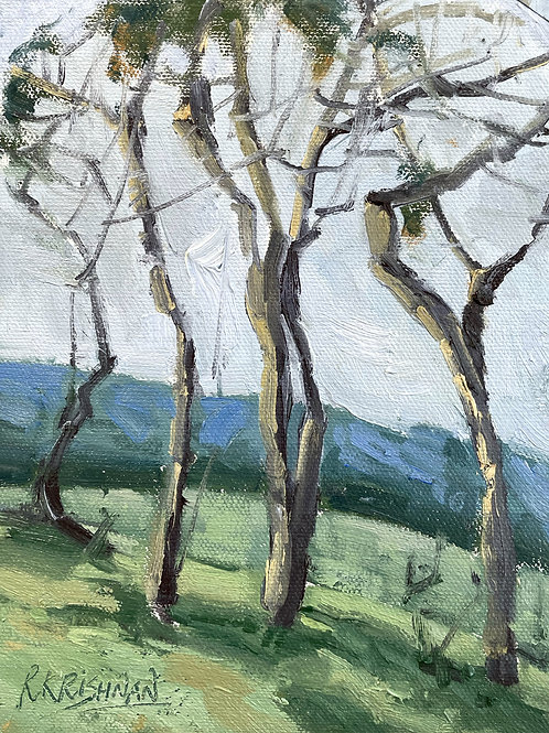 Dancing Trees | 8x6, Oil on Canvas
