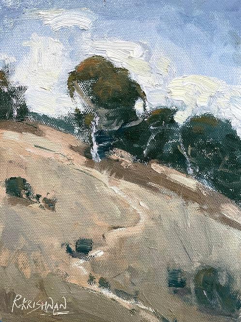 Hillside | 8x6, Oil on Canvas