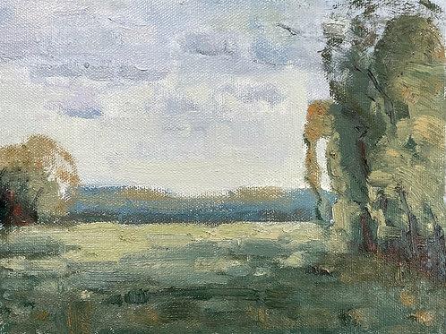 Meadows | 6x8, Oil on Canvas