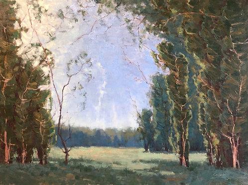 Secret Garden | 30x40, Oil on Canvas