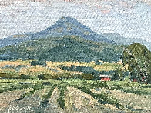 Strawberry Farm | 8x10, Oil on Canvas
