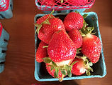 Dog River Farm Strawberries