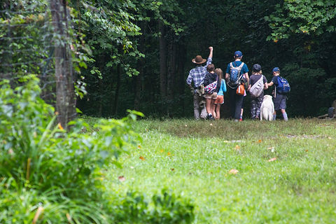 A group of staff and campers heading into the woods