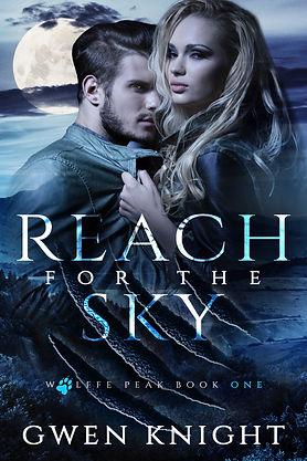 Reach for the Sky 6x9.jpg
