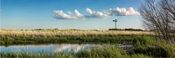 Prairie Land and Sky