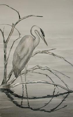 Great Blue Heron in Spring Flood