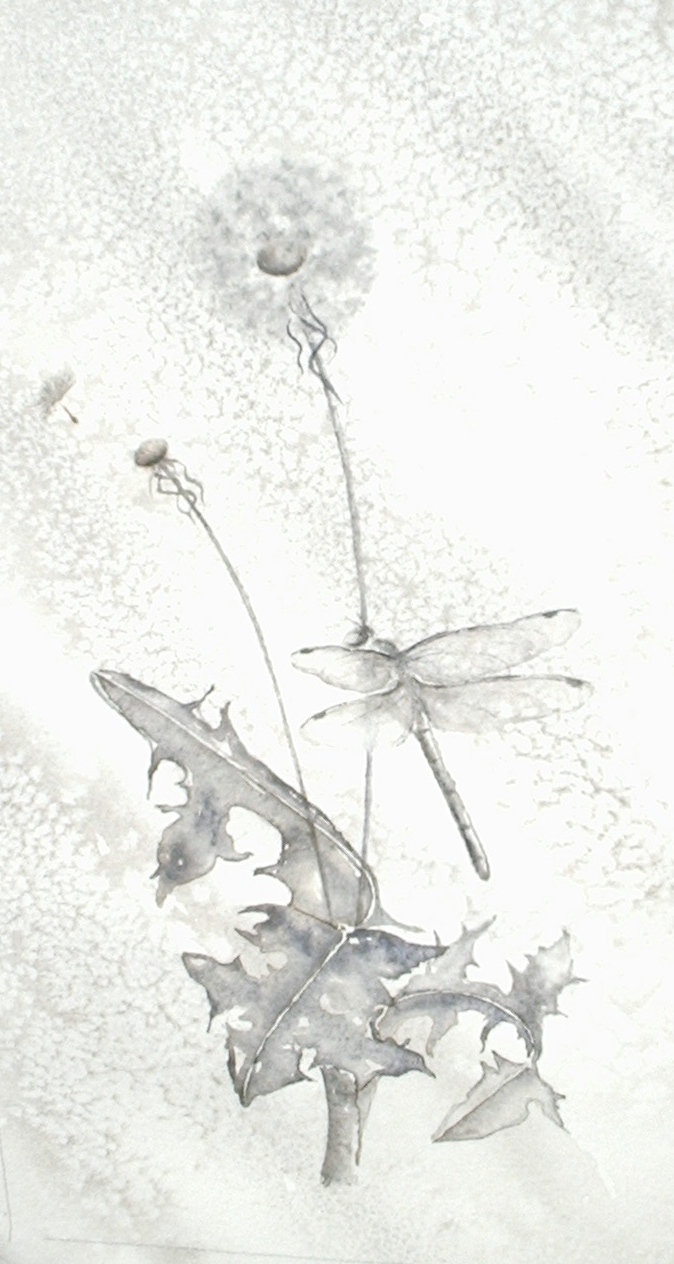 Dragonfly and Dandelion