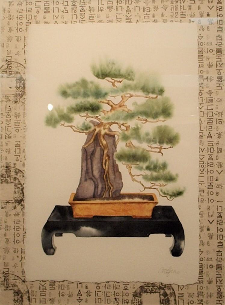 Cascading Bonsai (kengai)