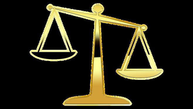 колпино, юрист, консультация, бесплатно, помощь, спб, 9887318,по уголовным, гражданским, жилищным, земельным, наследственным вопросам и семейным делам